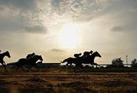 http://Silhouettes%20of%20horses%20racing