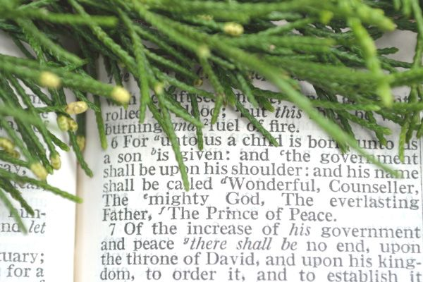 Evergreen boughs border Isaiah 9:6 in the Bible.