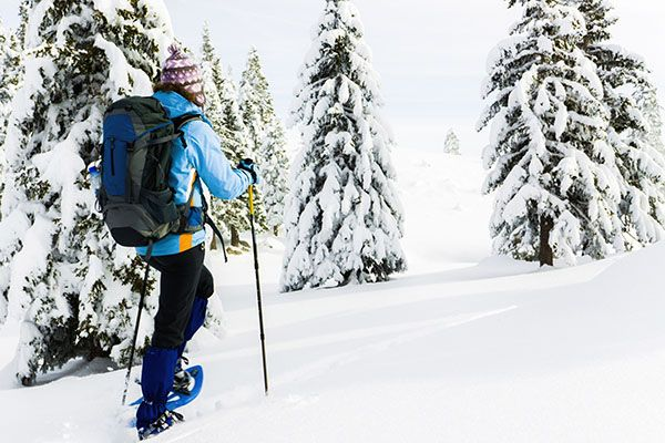 Person Snowshoeing through a snow covered forest