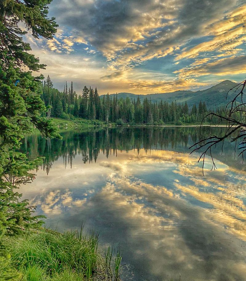 Clouds reflecting off a crystal clear lake surrounded by pine trees