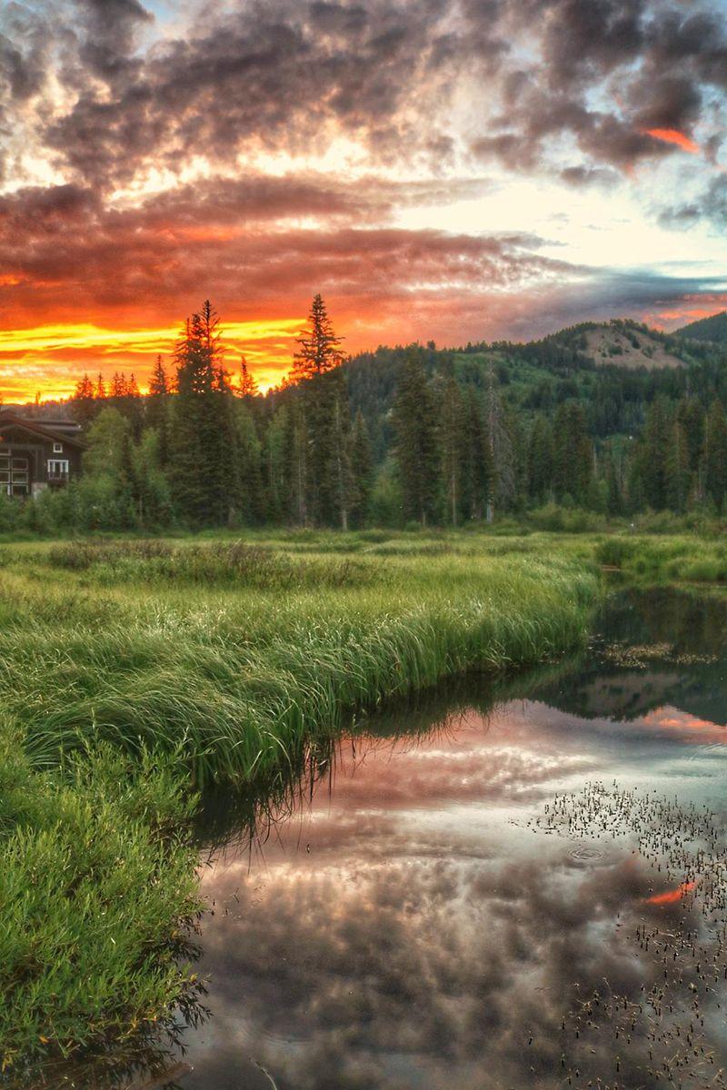 A still, small river running along a bank of tall grass at sunset.